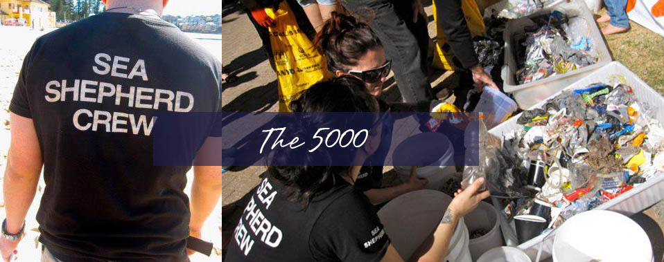 THE 5000