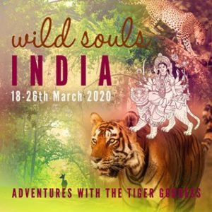 Wild Souls India:  Adventures with the Tiger Goddess